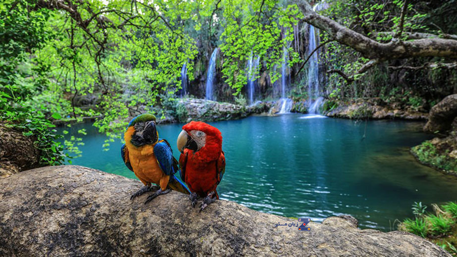 آبشار کورشونلو Kurşunlu