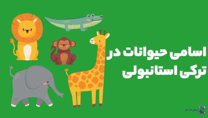 اسامی حیوانات در زبان ترکی استانبولی