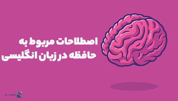 اصطلاحات مربوط به حافظه در انگلیسی