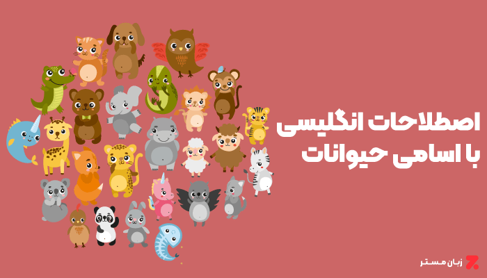 اصطلاحات انگلیسی مربوط به حیوانات